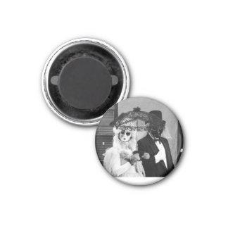 Dark Halloween goth masquerade ball magnet