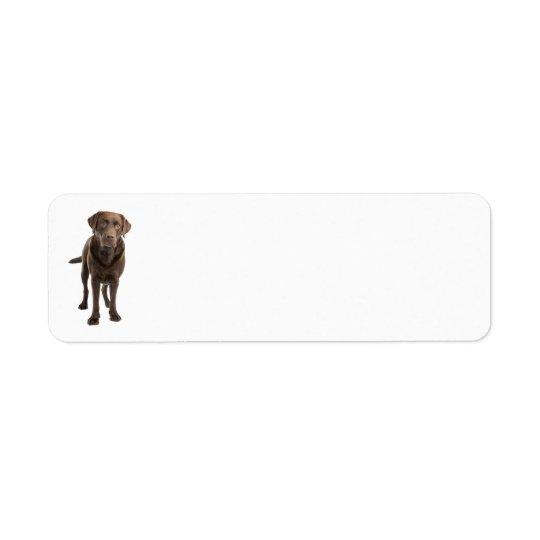 Dark Lab Address Label