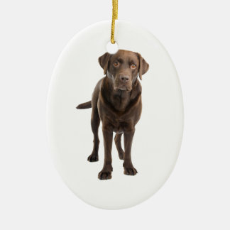 Dark Lab Ornament
