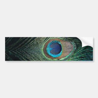 Dark Peacock Feather Bumper Sticker