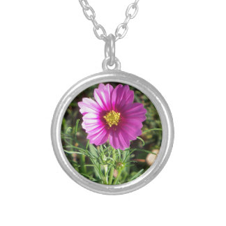 Dark pink Cosmos daisy flower Silver Plated Necklace