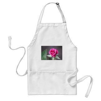 dark pink mini rose standard apron