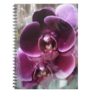 Dark Purple Moth Orchids Notebooks