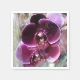 Dark Purple Moth Orchids Paper Napkin