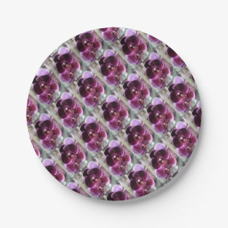 Dark Purple Moth Orchids Paper Plate