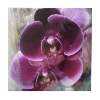 Dark Purple Moth Orchids Tile