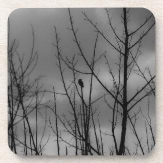 Dark Raven Coaster