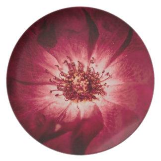 Dark Red Flower Blossom Plate