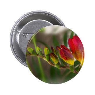 dark red freesia 2 inch round button