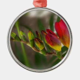 dark red freesia Silver-Colored round ornament