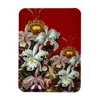 Dark Red Vintage Flower Garden Rectangular Photo Magnet