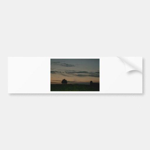Dark Scene Bumper Stickers