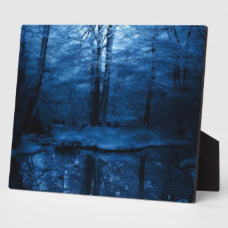 dark snowy woods photo plaque