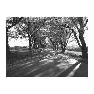 Darling Hill Canvas Print