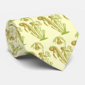 Darlingtonia californica, Carnivorous Plant Tie