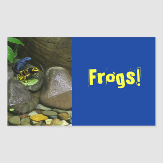 Dart Frog Buddies