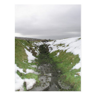 Dartmoor, Devon, UK Postcard