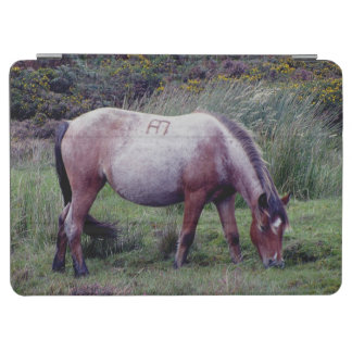 Dartmoor Pony Grazing Autumn iPad Air Cover