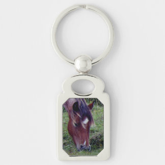 Dartmoor Pony Grazing Autumn Keyring