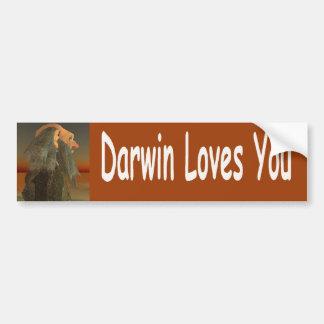 Darwin Bumper Sticker