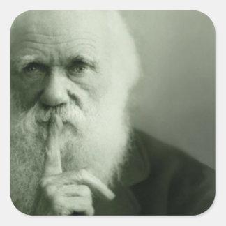 Darwin Portrait Stickers