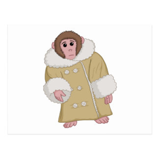 Darwin the Ikea Monkey Postcard