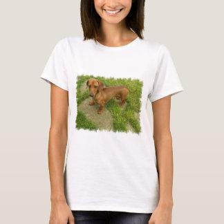 Daschund Ladies Fitted T-Shirt