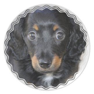 Daschund Puppy Dog Plate