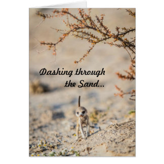 Dashing meerkat pup - Seasons Greetingcard Card
