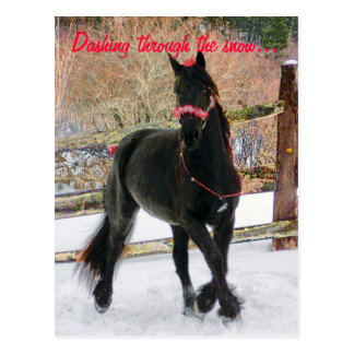 Dashing through the snow... postcard