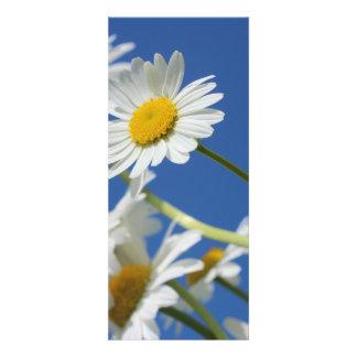 Dasy Flower Personalized Invitation