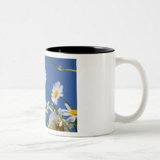 Dasy Flower Mug