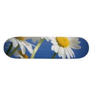 Dasy Flower Skateboard