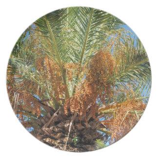 Date palm dinner plates