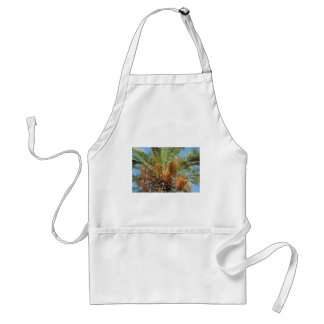 Date palm standard apron