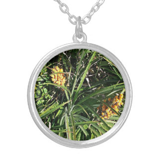 Dates in shrubs pendants