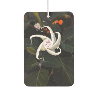 Datura Flower Bud Car Air Freshener