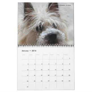 Dave's Garden 2016 Calendar