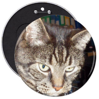 Dave's Watching You Colossal, Round Badge 6 Inch Round Button