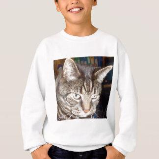 Dave's Watching You Sweatshirt