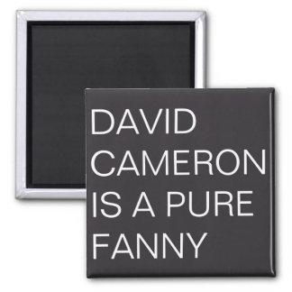 David Cameron Magnet