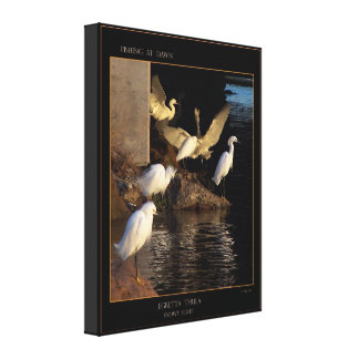 Dawn Snowy Egrets Wrapped Canvas