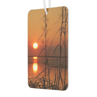 Day and night car air freshener