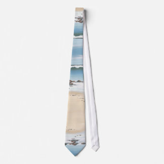 day at the beach-plain tie