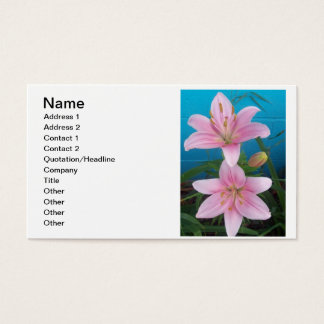 Day Lilly Business Card