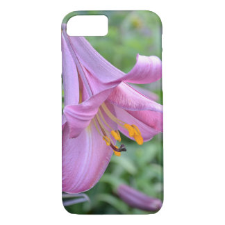 Day Lily in Bloom iPhone 7 Case