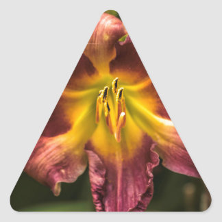 Day Lily Triangle Sticker