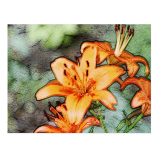 Day Lily's Postcard