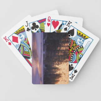 Daydreaming Bicycle Playing Cards