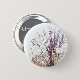 DayDreams - Button shrub